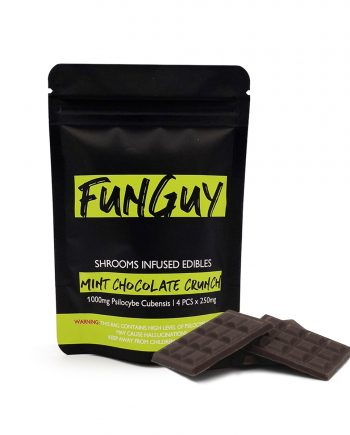 FUNGUY – MINT CHOCOLATE CRUNCH BAR