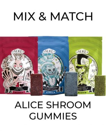 5 Pack Alice Shroom Gummy - Mix and Match