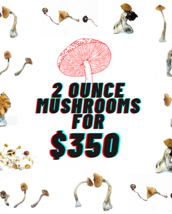 2 Oz Magic Mushrooms - Mix and Match